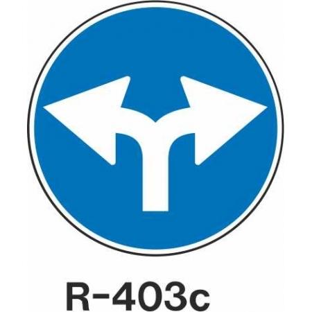 R403C